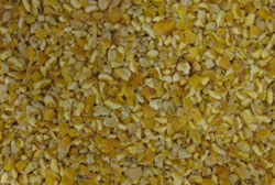 bird seed - cracked corn