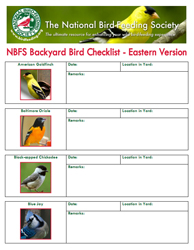 nbfs - backyard bird checklist eastern version